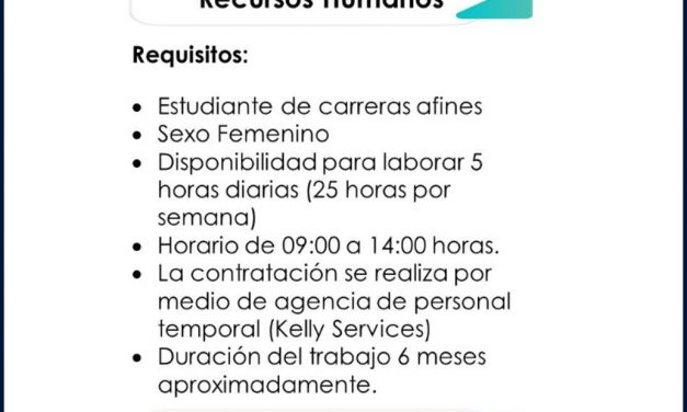 vacante becario ÁREA de recursos humanos dsv solutions s.a.