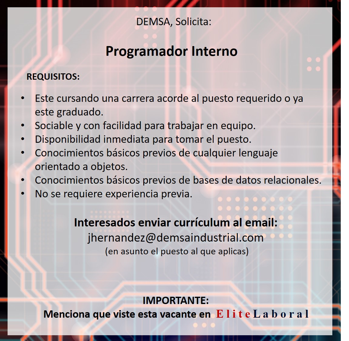 VACANTE Programador Interno