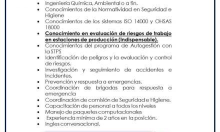 VACANTE INGENIERO DE SEGURIDAD E HIGIENE INDUSTRIAL